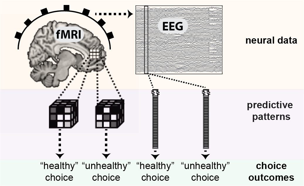 Brain decoding