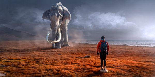 Photoshopped image of mythical elephant approaching man